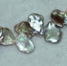 三七孔再生珍珠