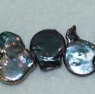 三七孔纽扣珍珠